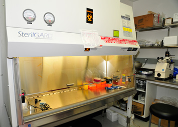 Tissue culture suite (Shared)